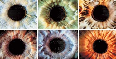 Iris eye recognition ID cards
