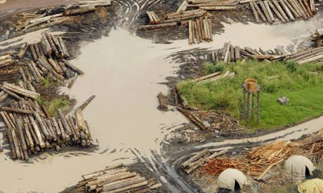 A sawmill in the Amazon