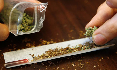http://image.guim.co.uk/sys-images/Guardian/Science/pix/2007/07/27/cannabis_2.jpg
