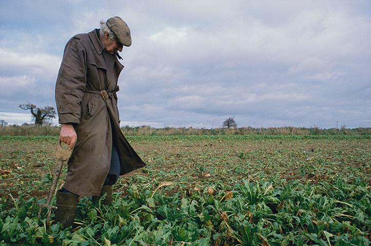 East Anglia - Weekend: elderly man standing in brown coat standing in field