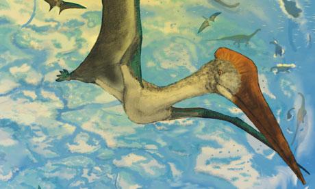 Azhdarchid pterosaurs